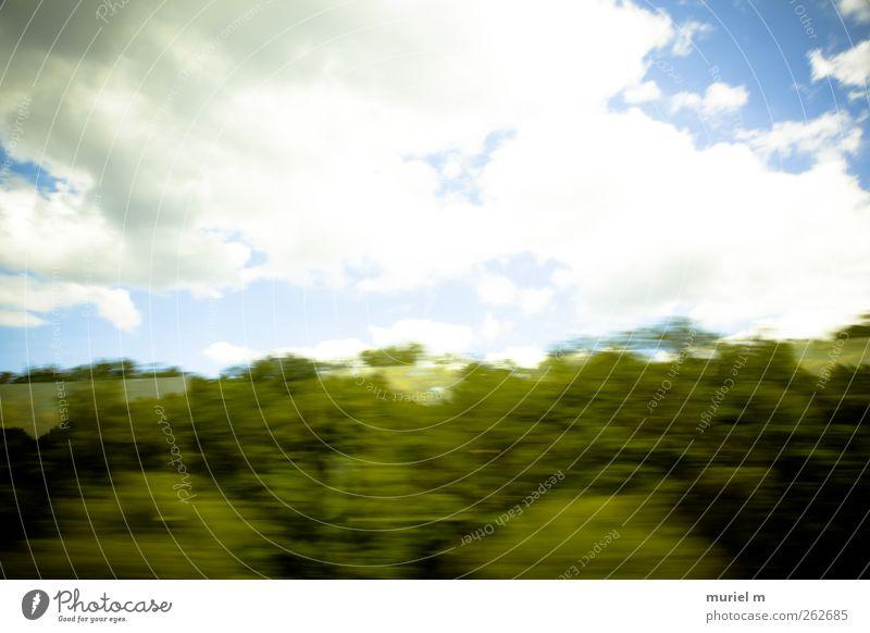 fast german summer Umwelt Natur Landschaft Pflanze Urelemente Luft Himmel Wolken Horizont Sommer Klima Klimawandel Wetter Schönes Wetter Baum Sträucher