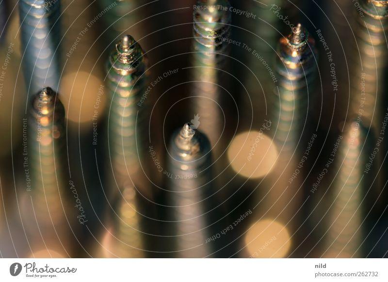 Schräubchen Metall gold Freizeit & Hobby elegant Ordnung Spitze Handwerker eckig Schraube Basteln stachelig schrauben heimwerken Schraubengewinde Messing