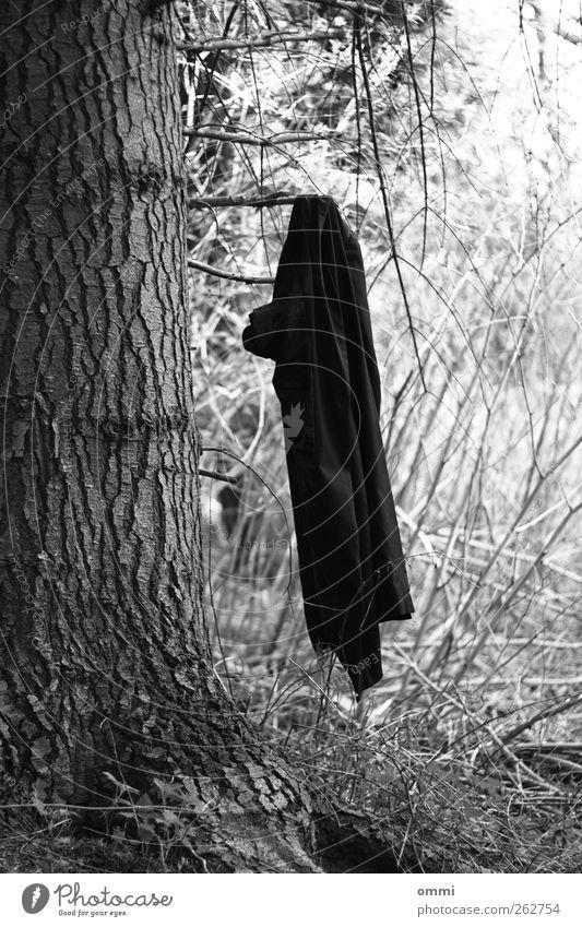 Für Garderobe keine Haftung weiß Baum schwarz außergewöhnlich Ast einfach Jacke hängen Mantel Baumrinde Kleiderhaken