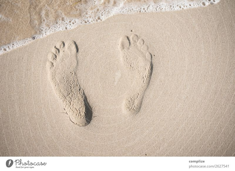 Nah am Wasser Ferien & Urlaub & Reisen Natur Sommer Sonne Meer Erholung Strand Gesundheit Küste Glück Freiheit Fuß Schwimmen & Baden Sand Zufriedenheit