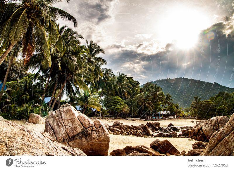 lebe deinen traum Ferien & Urlaub & Reisen Tourismus Ausflug Abenteuer Ferne Freiheit Natur Landschaft Himmel Wolken Sonne Palme Urwald Felsen Berge u. Gebirge