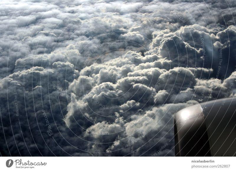Ich bin dann mal weg.. Ferien & Urlaub & Reisen Freiheit Umwelt Himmel Wolken Gewitterwolken Wetter Unwetter Sturm Luftverkehr Flugzeug Flugzeugausblick fliegen