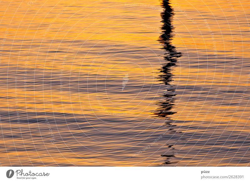 Wellengang Umwelt Natur Urelemente Wasser Sonnenlicht Klima Küste Seeufer Nordsee Ostsee Meer Fluss gold orange schwarz Gefühle Stimmung Traurigkeit Einsamkeit