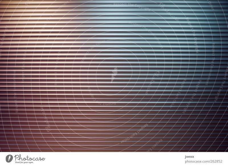Liefereingang Menschenleer Rolltor Metall Stadt blau rosa schwarz weiß Jalousie Rollladen Aluminium geschlossen Lamellenjalousie Farbfoto Gedeckte Farben