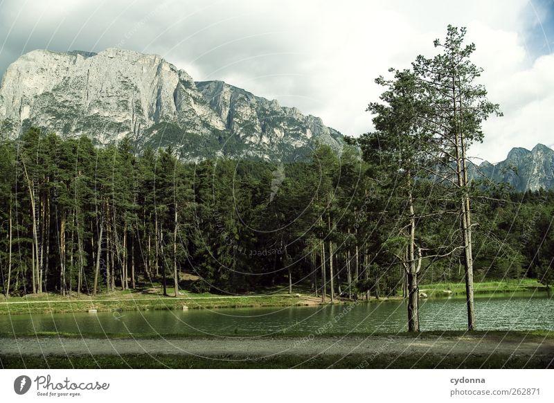 Waldsee mit Blick zum Schlern Natur Baum Ferien & Urlaub & Reisen Sommer Einsamkeit ruhig Wald Erholung Umwelt Landschaft Berge u. Gebirge Wege & Pfade See Ausflug Tourismus Reisefotografie