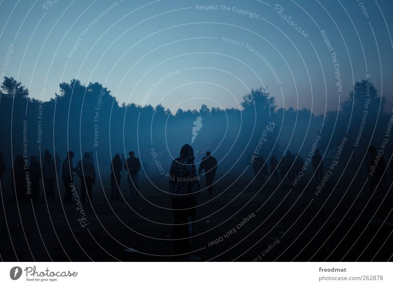 blaue stunde Mensch Natur Jugendliche Sommer ruhig Wald dunkel kalt Feste & Feiern Freizeit & Hobby Nebel Abenteuer Lifestyle geheimnisvoll Schönes Wetter