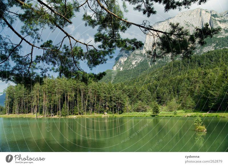 Still ruht der See harmonisch Erholung ruhig Ferien & Urlaub & Reisen Tourismus Ausflug Ferne Freiheit Umwelt Natur Landschaft Sommer Baum Wald Alpen