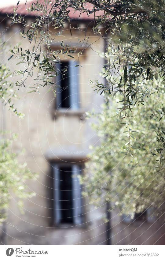 Halb zehn in Verona. Stadt ästhetisch mediterran Italien Haus Ferienhaus Fenster Fensterladen Olivenbaum Idylle Italienisch Flair friedlich Sommerurlaub