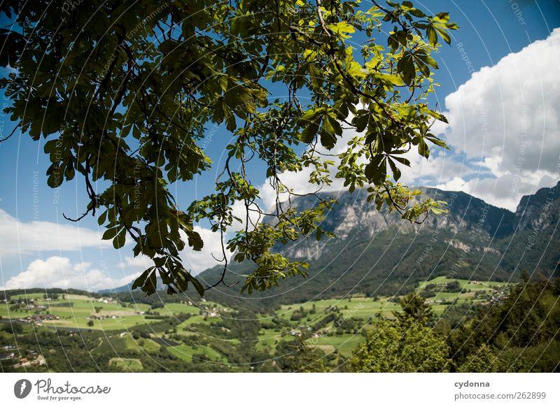 Kleine Welt, große Berge Himmel Natur Baum Ferien & Urlaub & Reisen Sommer Haus ruhig Wald Ferne Erholung Umwelt Landschaft Leben Wiese Berge u. Gebirge
