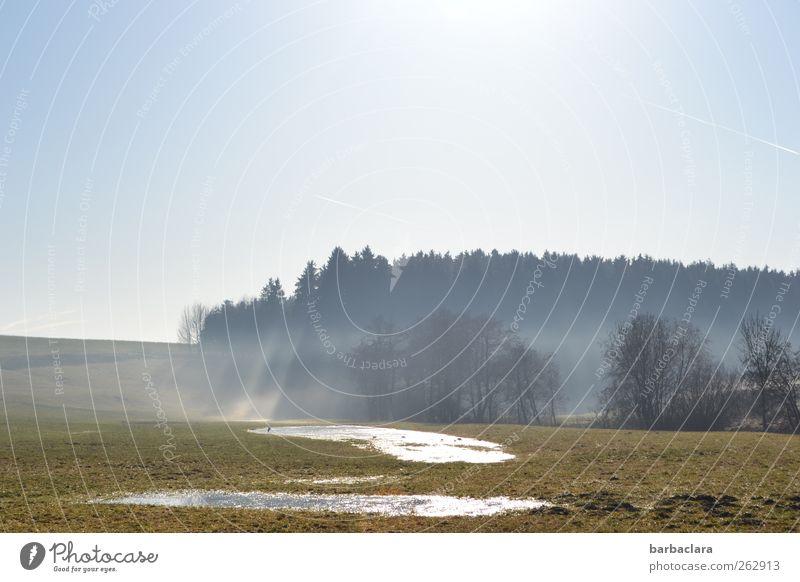 Schneeschmelze Natur blau Wasser Baum Sonne Winter Wald Landschaft Frühling hell Feld Nebel glänzend natürlich leuchten Wolkenloser Himmel