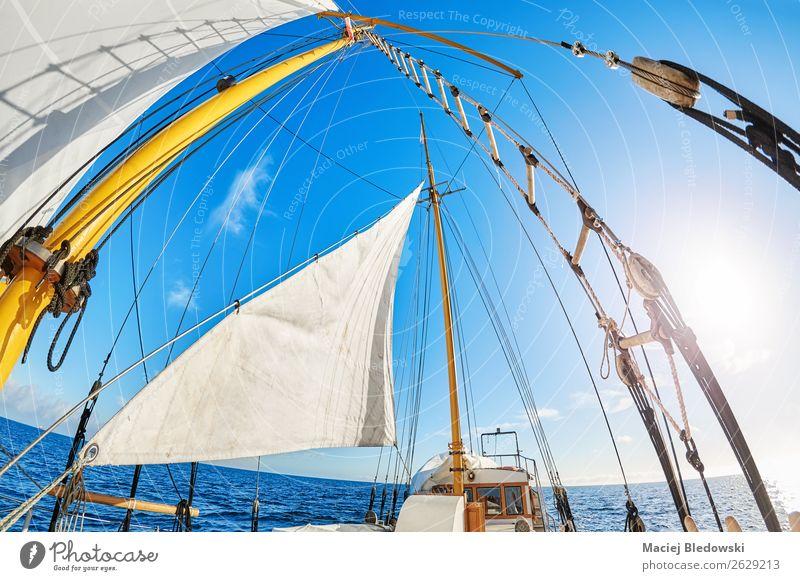 Fisheye-Objektivansicht eines alten Schoners. Lifestyle Ferien & Urlaub & Reisen Abenteuer Freiheit Kreuzfahrt Sonne Meer Segeln Seil Leiter Himmel Wind Ostsee