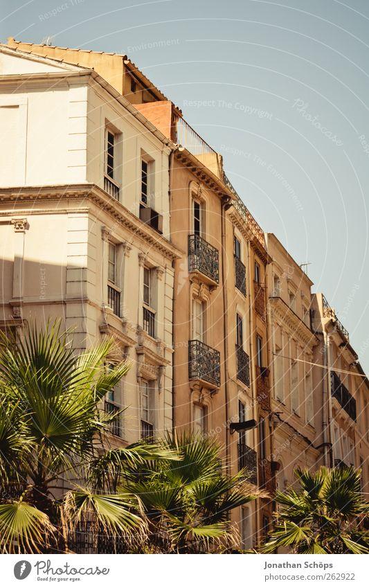 Narbonne VIII Stadt grün Sonne Sommer Haus ruhig Fenster Architektur Wärme Gebäude orange Fassade Häusliches Leben Reisefotografie Bauwerk Palme