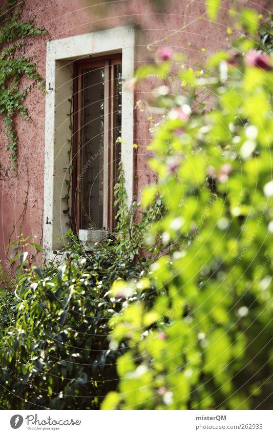 Garten mediterran. Kunst ästhetisch Idylle friedlich Häusliches Leben Vorgarten Italien grün Autofenster Fensterrahmen Fensterladen Hecke Privatsphäre Wand
