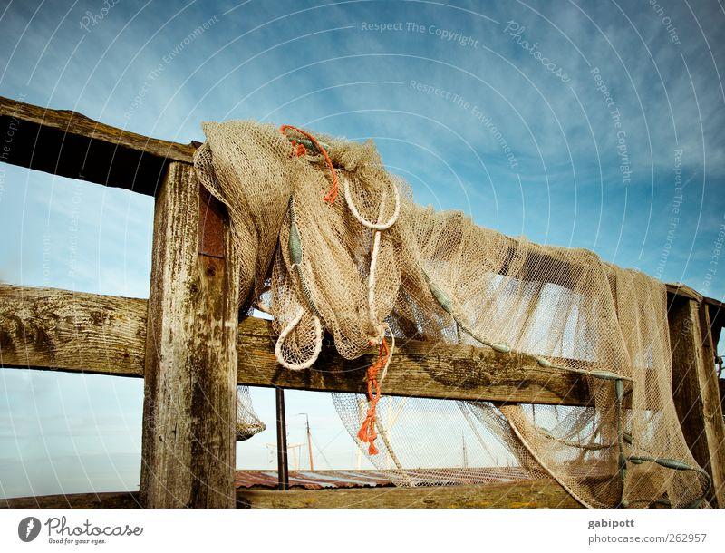 abhängen Himmel Sommer Zaun Netz Netzwerk Fischernetz Zaunpfahl Holz Freundlichkeit Fröhlichkeit frisch blau braun gelb Lebensfreude Romantik Abenteuer Idylle