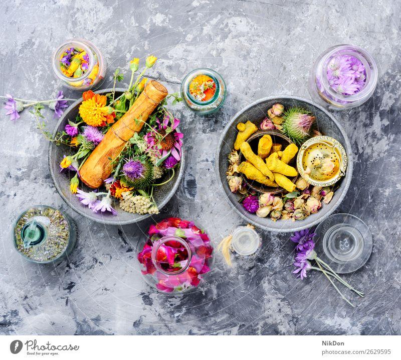 Alternative pflanzliche Medizin Kraut Kräuterbuch Pflanze natürlich alternativ Gesundheit Extraktion Essenz Natur Blume frisch organisch Blatt Therapie Abhilfe
