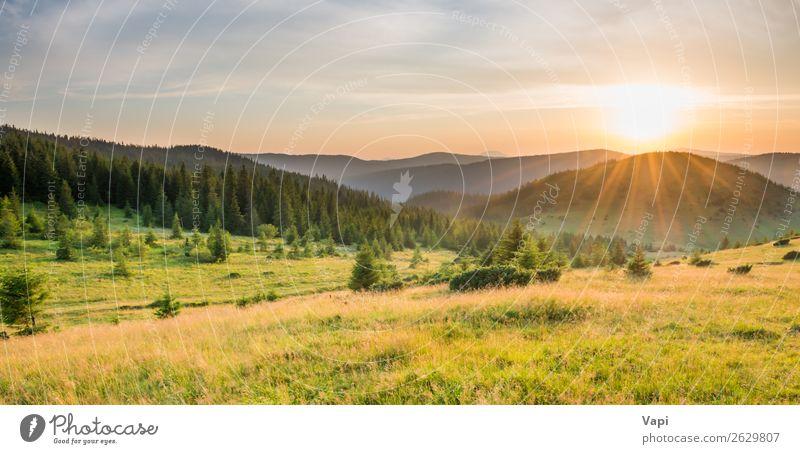 Himmel Ferien & Urlaub & Reisen Natur Sommer Pflanze blau schön grün Landschaft weiß rot Sonne Baum Wolken Wald Berge u. Gebirge