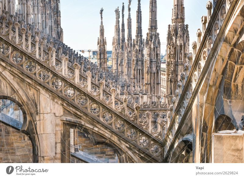 Architektur auf dem Dach der Domkirche schön Ferien & Urlaub & Reisen Tourismus Sightseeing Städtereise Dekoration & Verzierung Kunst Skulptur Kultur Himmel
