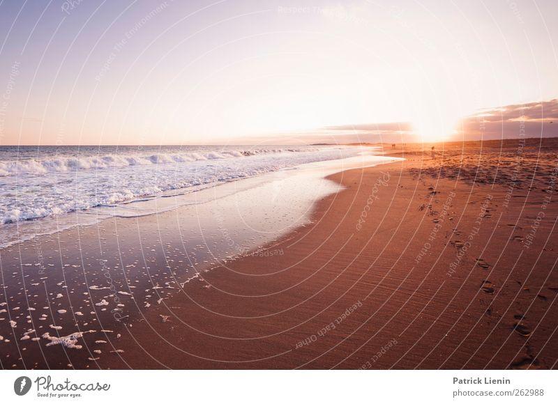 Day in Paradise Natur Wasser Ferien & Urlaub & Reisen Sonne Sommer Meer Strand Ferne Umwelt Landschaft Freiheit Sand Küste Luft Wellen gold