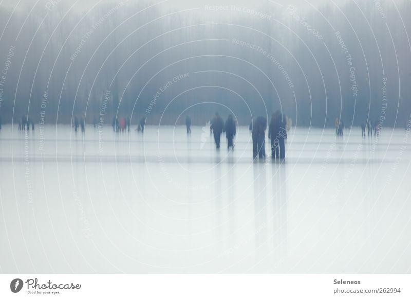 Tschüss Winter Ausflug Schnee Winterurlaub Mensch Menschengruppe Umwelt Natur Landschaft Eis Frost Wiese Wald Seeufer laufen kalt Spaziergang Gedeckte Farben