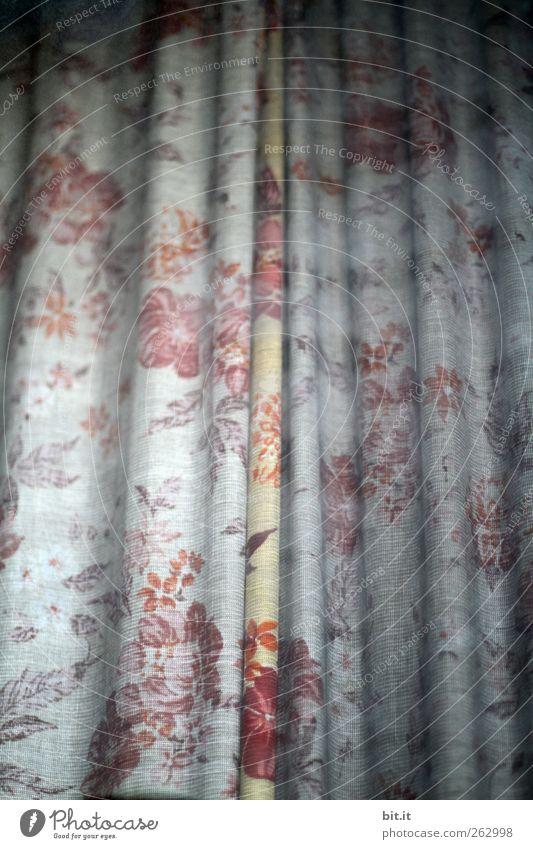 Vorhang auf, jetzt kommt der Text da, für Dexter alt Blume Fenster Traurigkeit Linie Innenarchitektur Tür Wohnung geschlossen Häusliches Leben Dekoration & Verzierung Streifen Stoff Vergänglichkeit Kitsch Falte