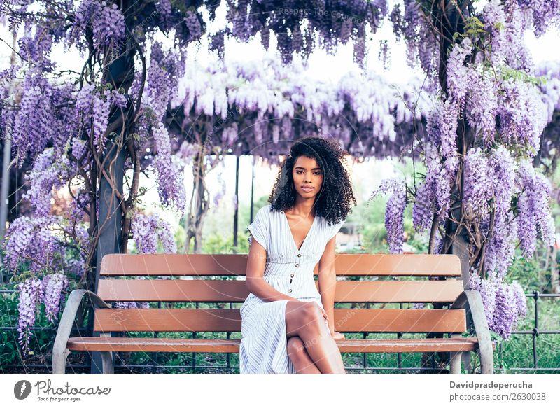 Fröhliche junge schwarze Frau, die von Blumen umgeben sitzt. Blüte Frühling Fliederbusch Porträt multiethnisch Afrikanisch Person gemischter Abstammung Lächeln