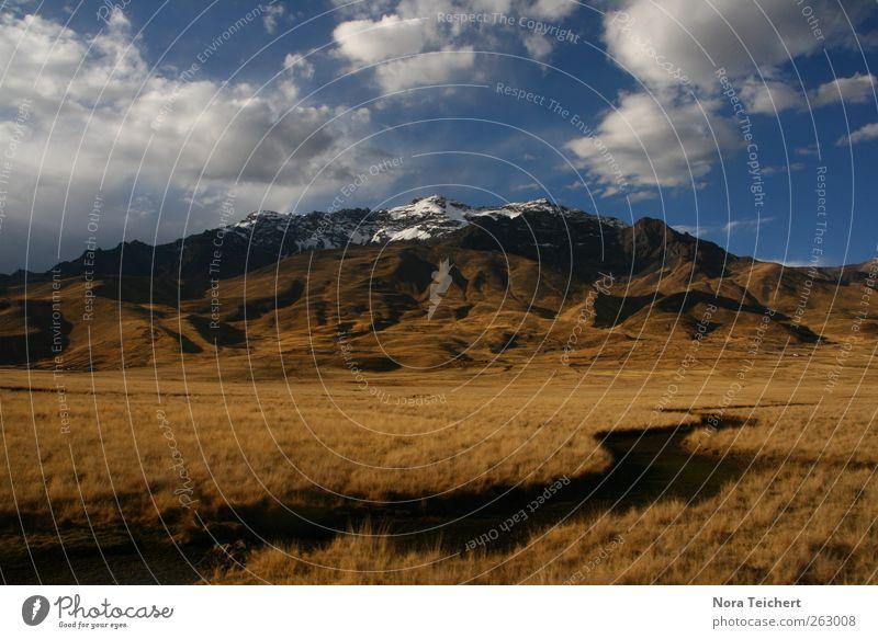 Hoch in den Anden Umwelt Natur Landschaft Pflanze Erde Wasser Himmel Wolken Sommer Herbst Klima Schönes Wetter Schnee Gras Sträucher Wiese Berge u. Gebirge