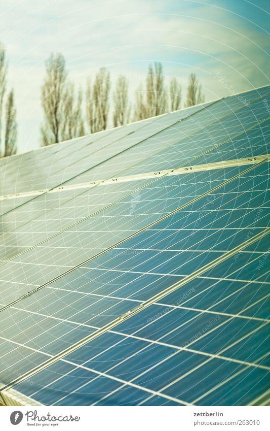 Solar Wirtschaft Industrie Dienstleistungsgewerbe Energiewirtschaft Unternehmen Technik & Technologie Wissenschaften Fortschritt Zukunft High-Tech