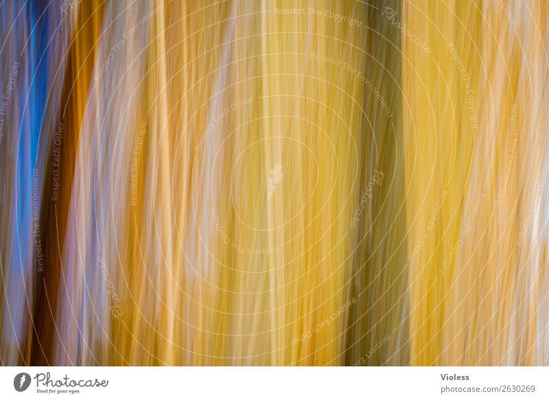 Autumn Herbst Unschärfe gelb abstrakt Experiment