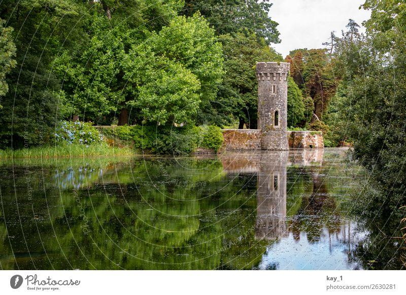 Johnstown Castle alt Sommer grün Wasser Landschaft Baum ruhig Wald Garten See Zufriedenheit ästhetisch Turm Sehenswürdigkeit Schutz Burg oder Schloss