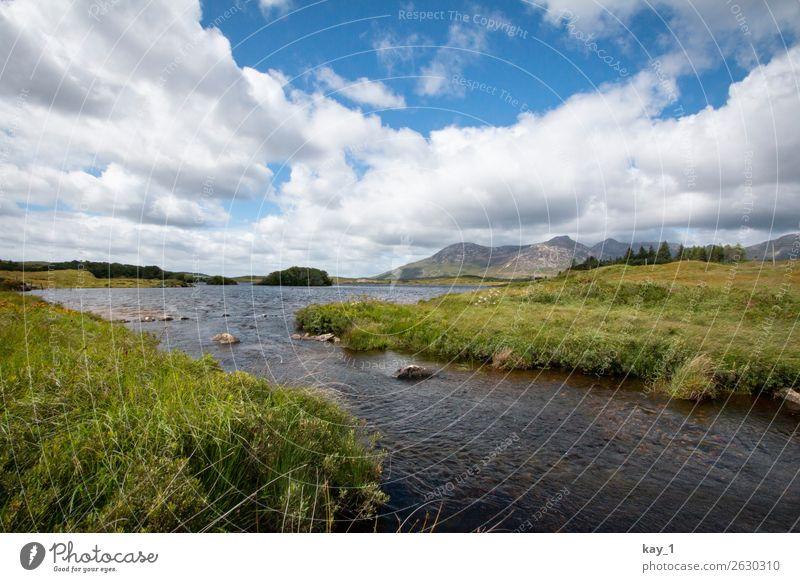 Ein kleiner Fluss zieht durch mit Gras bewachsene Weideflächen, im Hintergrund Berge. Natur Landschaft Wasser Horizont Schönes Wetter Sommer Flussufer