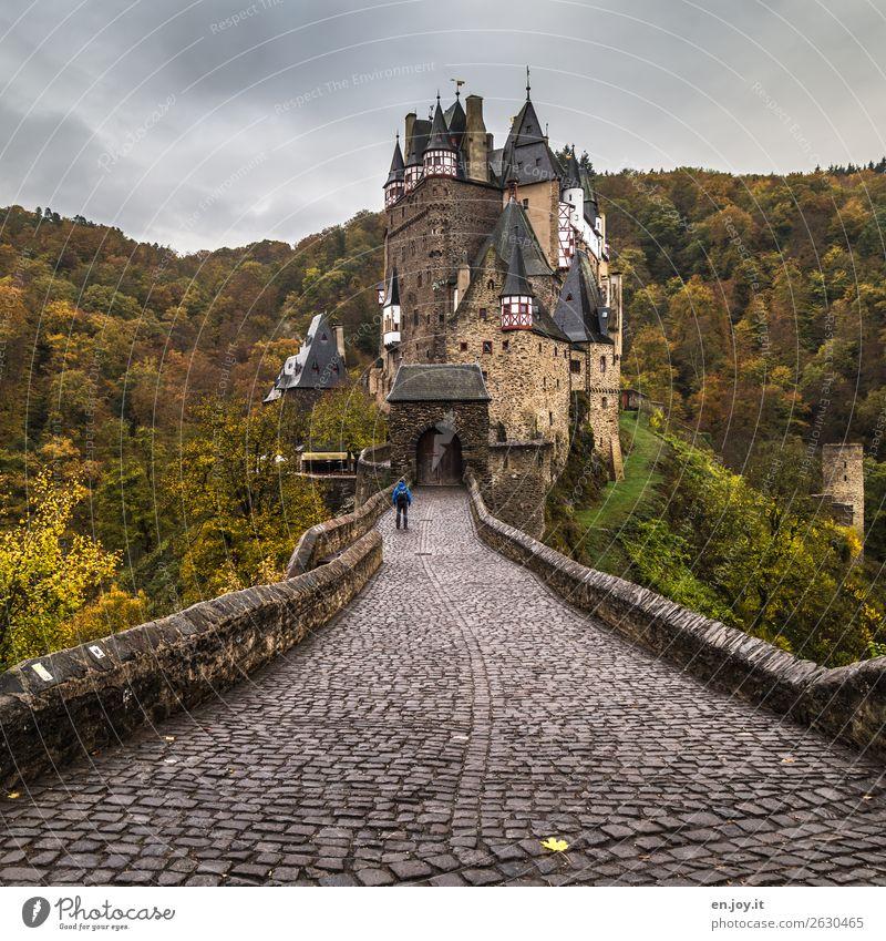 geschlossene Gesellschaft Ferien & Urlaub & Reisen Sightseeing Mann Erwachsene 1 Mensch Gewitterwolken Herbst schlechtes Wetter Wald Hügel Rheinland-Pfalz