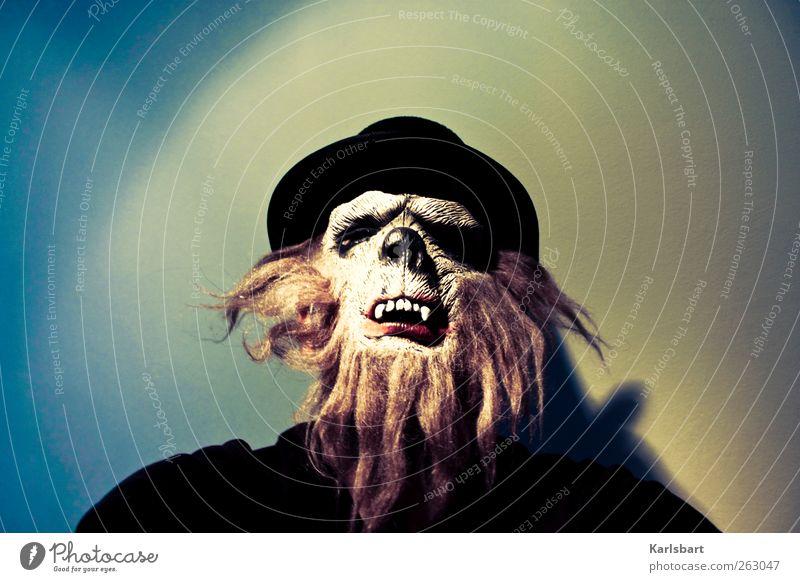 Tausendschön. Freude Feste & Feiern Karneval Halloween Mensch Kopf Gesicht 1 Hut Haare & Frisuren Bart Behaarung Tier gruselig hässlich Angst