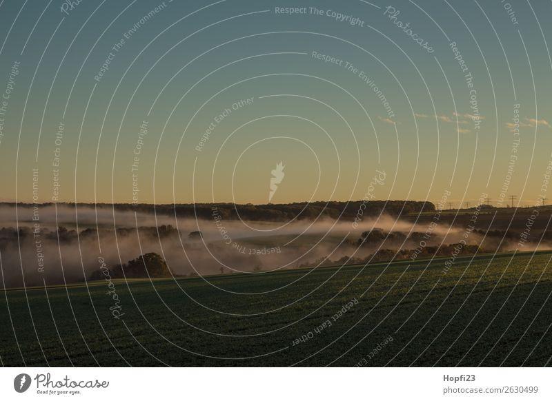 Morgennebel über Möbisburg Umwelt Natur Landschaft Pflanze Himmel Sonne Sonnenaufgang Sonnenuntergang Sonnenlicht Herbst Klima Nebel Feld kalt Wärme blau