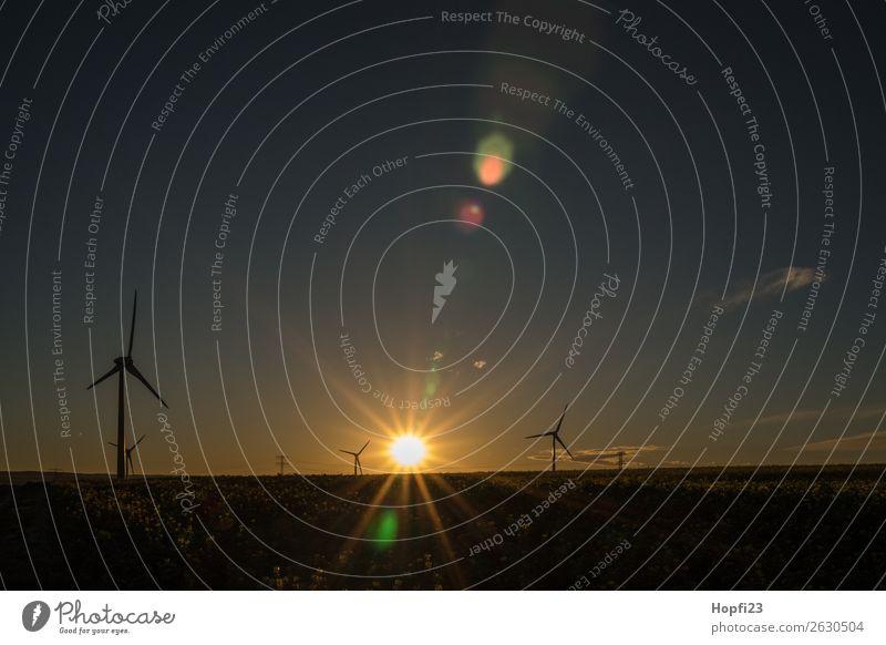 Sonnenaufgang bei den Windrädern Himmel Natur Landschaft Herbst Umwelt Wetter Erde Luft Technik & Technologie Energiewirtschaft Schönes Wetter Elektrizität