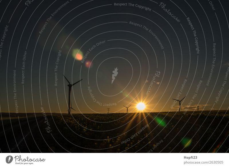 Sonnenaufgang bei den Windrädern Wirtschaft Industrie Energiewirtschaft Maschine Motor High-Tech Erneuerbare Energie Windkraftanlage Umwelt Natur Landschaft