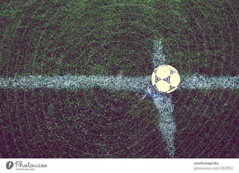 fussball anstoss zur EM 2012 Sport Spielen Gefühle Linie Fußball Erfolg Sportrasen Fitness Spielfeld Eckstoß Publikum kämpfen Sportveranstaltung Leder Pokal