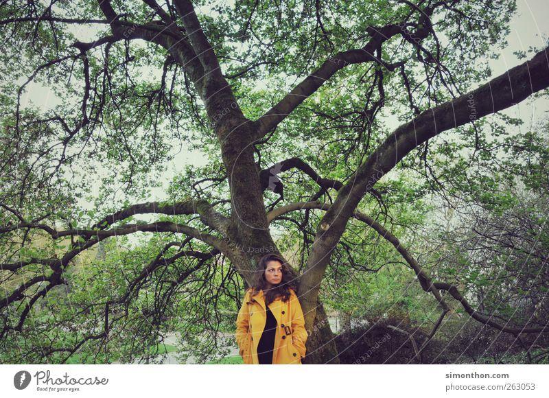 baum Mensch Natur schön Baum gelb Mode Park einzigartig retro Model Mantel Mittelpunkt Regenmantel