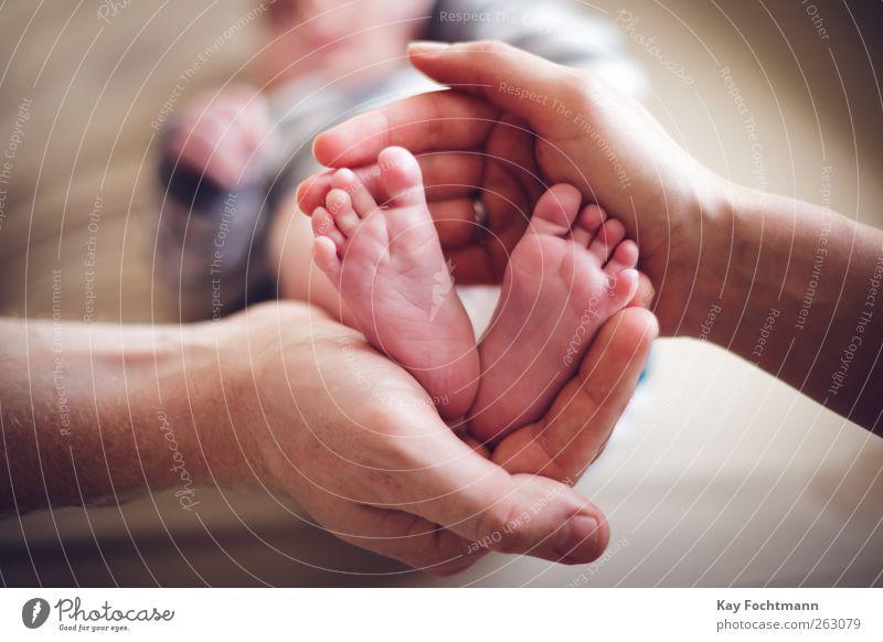 :) Mensch Hand Erholung Freude Wärme Liebe klein Glück Gesundheit Fuß braun maskulin Wohnung Zufriedenheit Baby Warmherzigkeit