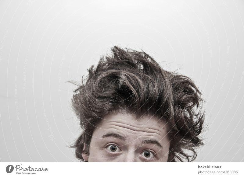 Bad Hair Day Mensch maskulin Junger Mann Jugendliche Kopf Haare & Frisuren Auge 1 18-30 Jahre Erwachsene brünett Locken beobachten Blick außergewöhnlich oben