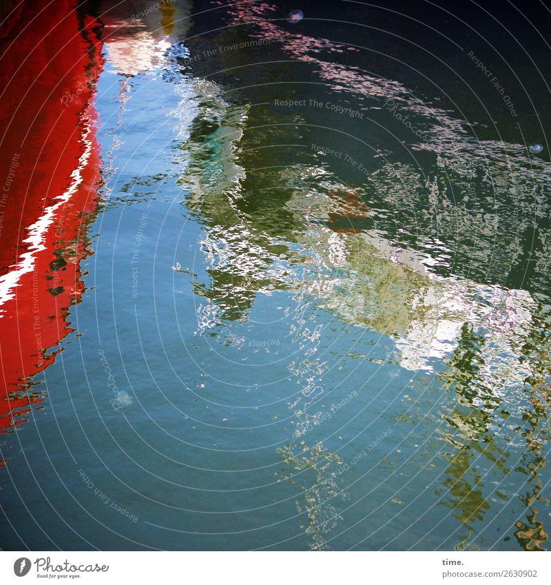 Ostseeschorle Himmel Wasser Tier Leben kalt Bewegung Design Wellen ästhetisch Kreativität Perspektive Schönes Wetter Vergänglichkeit Idee Wandel & Veränderung