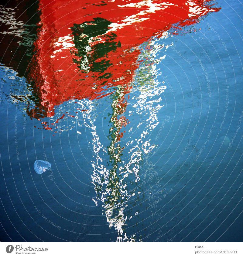 Verwandlung | Auflösungserscheinungen Wasser Schönes Wetter Wellen Küste Schifffahrt Segelboot Hafen Qualle Flüssigkeit maritim nass blau mehrfarbig rot Leben