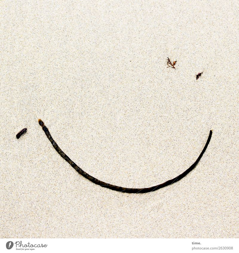 angespülte | Überraschung Kunstwerk Skulptur Sand Seegras Strand Zeichen Linie Gesichtsausdruck Smiley Lächeln Freundlichkeit Fröhlichkeit Glück listig lustig