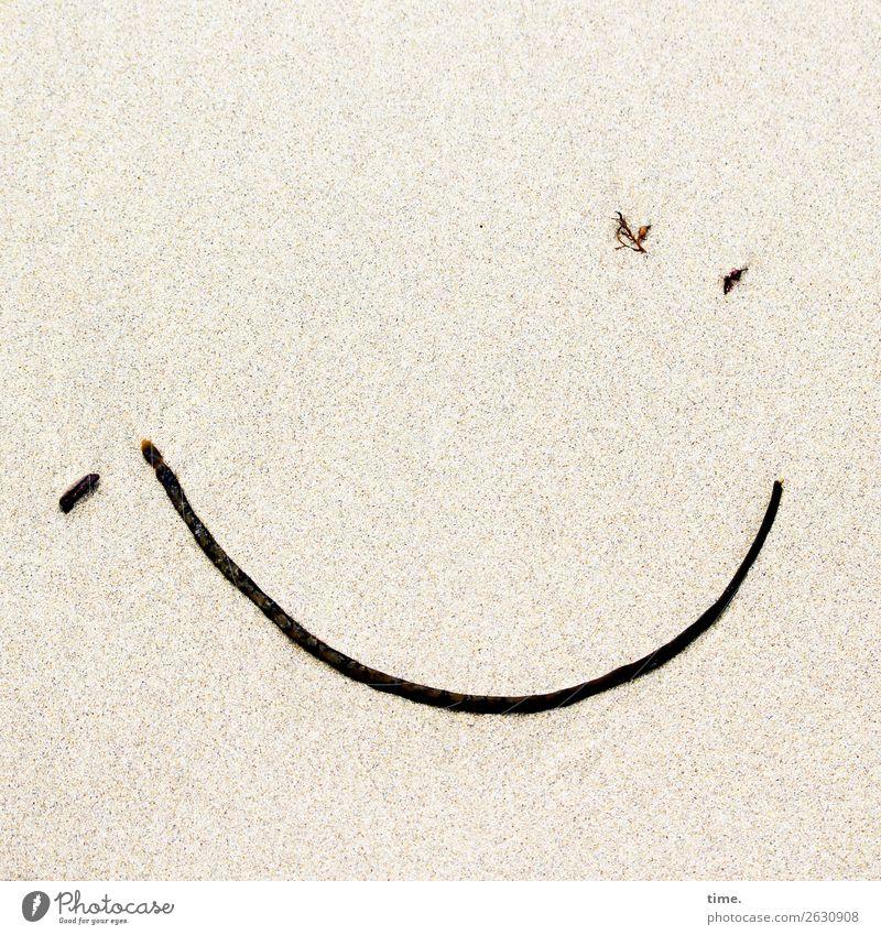 angespülte | Überraschung Strand Leben natürlich lustig Gefühle Glück Sand Stimmung Design Zufriedenheit Linie Lächeln ästhetisch Fröhlichkeit Kreativität