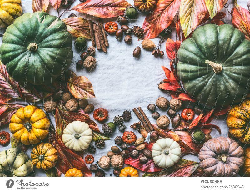 Herbst Stillleben mit Kürbisse, Nüsse und Herbstlaub Gemüse Lifestyle kaufen Design Dekoration & Verzierung Ornament Hintergrundbild Verschiedenheit herbstlich