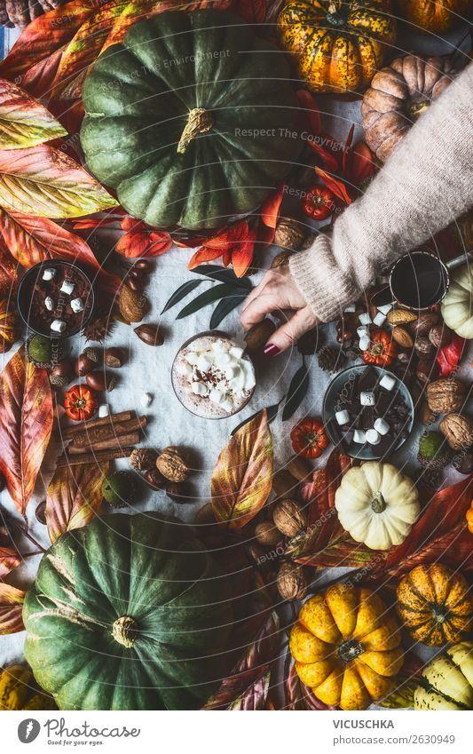 Herbst Stilleben mit Kürbisen und heiße Schokolade Frau Hand Lifestyle Erwachsene feminin Stimmung Häusliches Leben Design Wohnung Dekoration & Verzierung