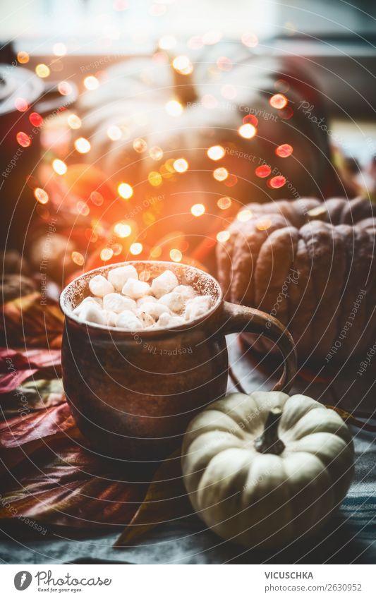 Tasse mit heiße Schokolade , MMarshmallow und Kürbis Getränk Heißgetränk Kakao Stil Design Häusliches Leben Wohnung Dekoration & Verzierung Herbst Stillleben