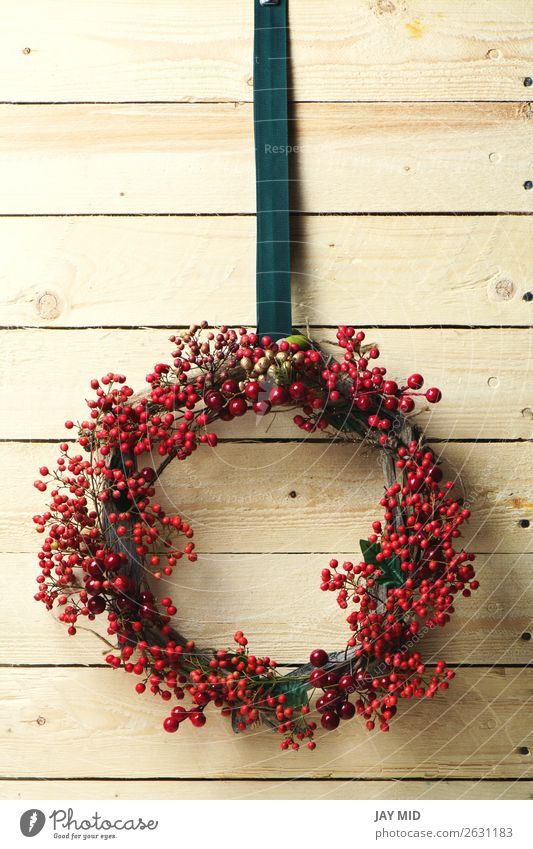 Weihnachten & Advent Pflanze Farbe rot Blatt Winter natürlich Feste & Feiern Dekoration & Verzierung Aussicht glänzend Ostern Jahreszeiten Tradition