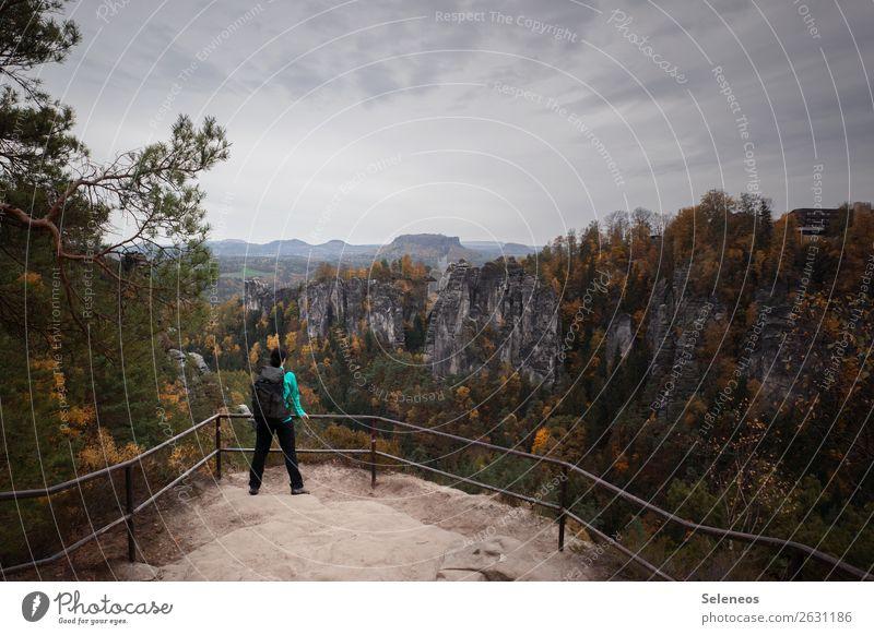 Wandern im Herbst Freizeit & Hobby Ferien & Urlaub & Reisen Tourismus Ausflug Abenteuer Ferne Freiheit Mensch feminin 1 Umwelt Natur Landschaft Wolken Horizont