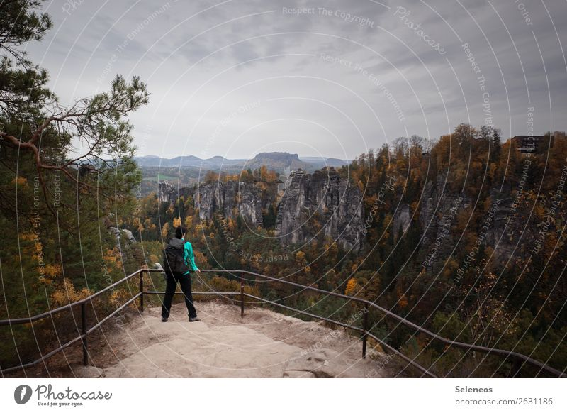Wandern im Herbst Mensch Ferien & Urlaub & Reisen Natur Landschaft Erholung Wolken Ferne Berge u. Gebirge Umwelt feminin Tourismus Freiheit Felsen Ausflug