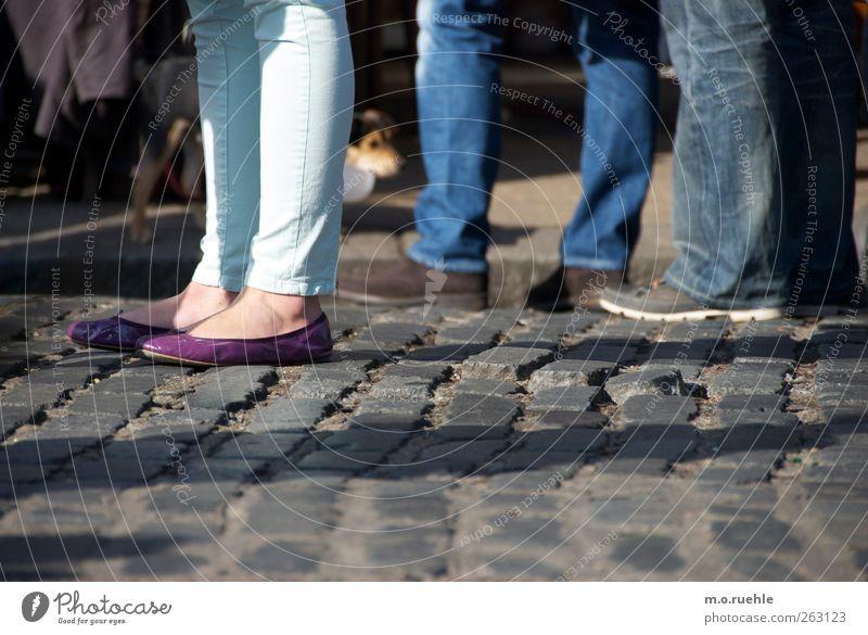 Hundeperspektive Lifestyle Mensch maskulin feminin Beine Fuß 3 Schuhe Ballerina Tier Perspektive Pflastersteine klein Hundeblick orientierungslos planlos
